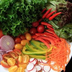 salad_dish_by_sxc.hu-user-